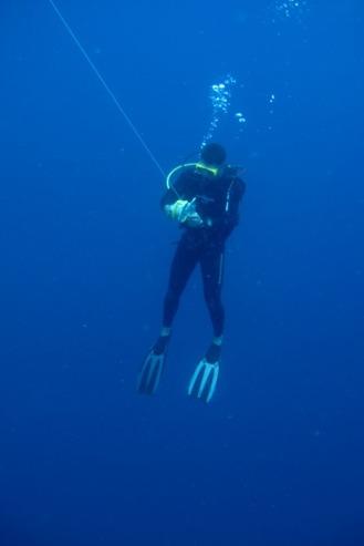 Dive Master leading a dive